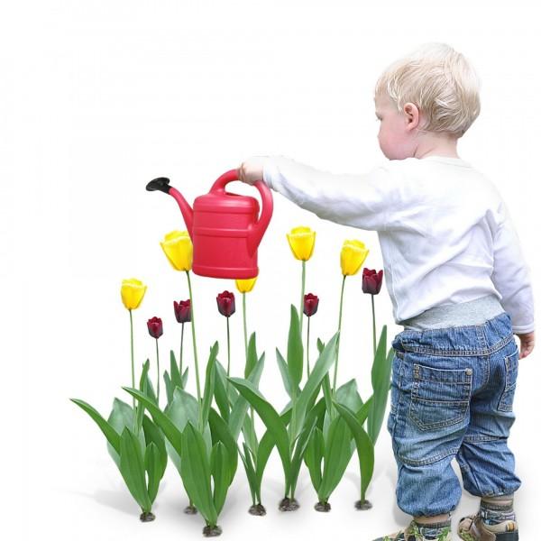 Kindergießkanne 1 Liter rot